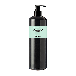 Evas Valmona Ayurvedic Scalp Solution Black Cumin Shampoo - Шампунь для волос Аюрведический, 480мл